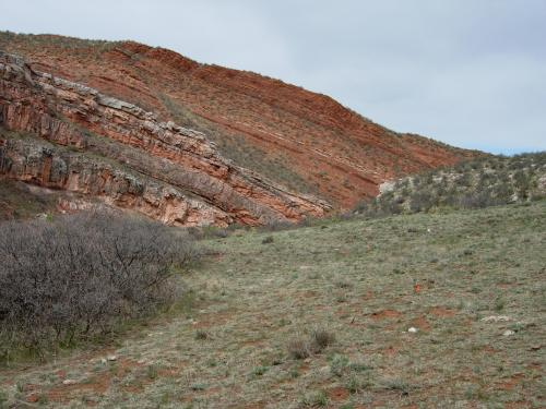 Along the trail at Red Mountain Ranch Open Space