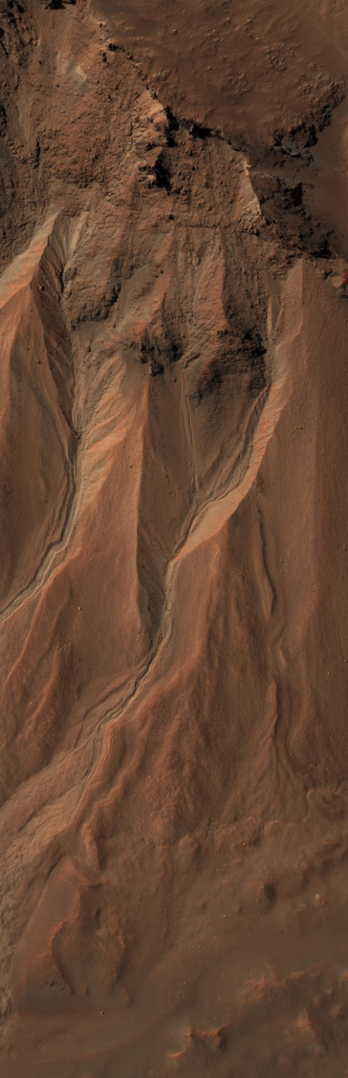 Gullies at the edge of Hale Crater, Mars (NASA/JPL/University of Arizona)