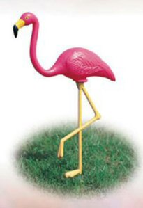pink_flamingo_2